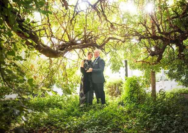 Newly weds under green tree