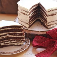 Chocolate Spartak Cake (No Rolling)