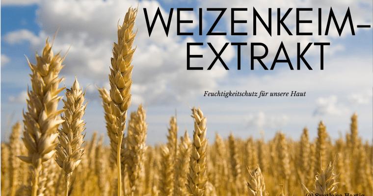 Weizenkeimextrakt – Wie er auf unsere Haut wirkt