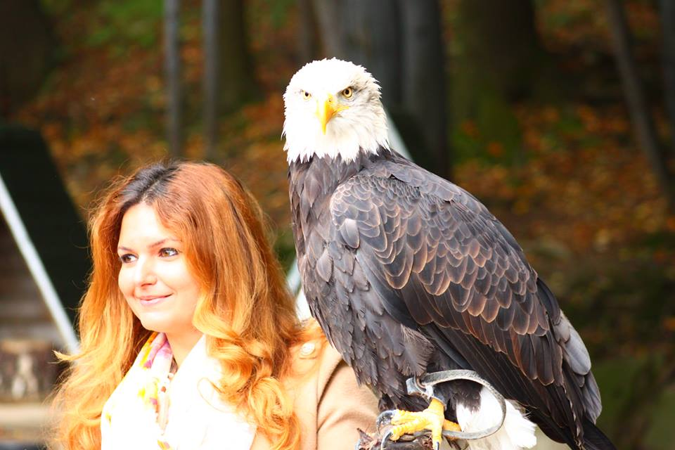 Eagle days, Poland, Svetlina