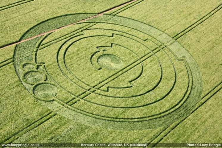kruh v obilí anglie