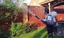 опрыскиватель садовый