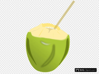 Coconut Svg Vector Coconut Clip Art Svg Clipart