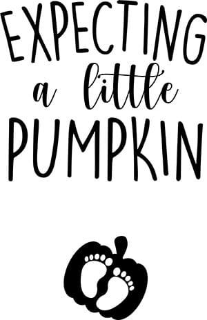 Expecting a Little Pumpkin Fall Pregnancy Announcement SVG