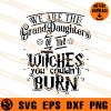 We Are The Grand Daughters Of The Witches You Could Not Burn SVG