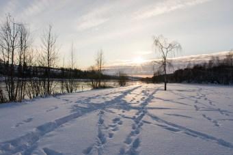 Foto natur snø landskap