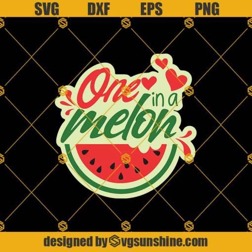 One In A Melon Svg, Funny Watermelon Svg, 1st First Birthday Svg, Watermelon Svg, Summer Beach Fruit Svg