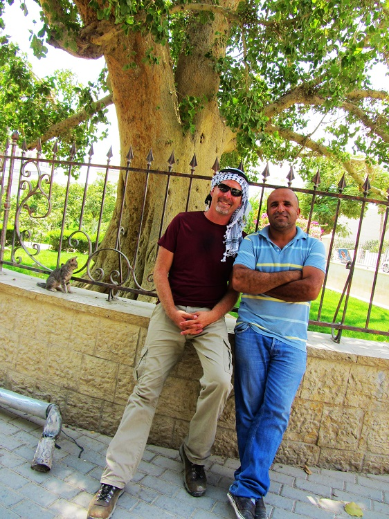 Israel - Jericho - Sycomore Tree With Basim The Taxi Driver
