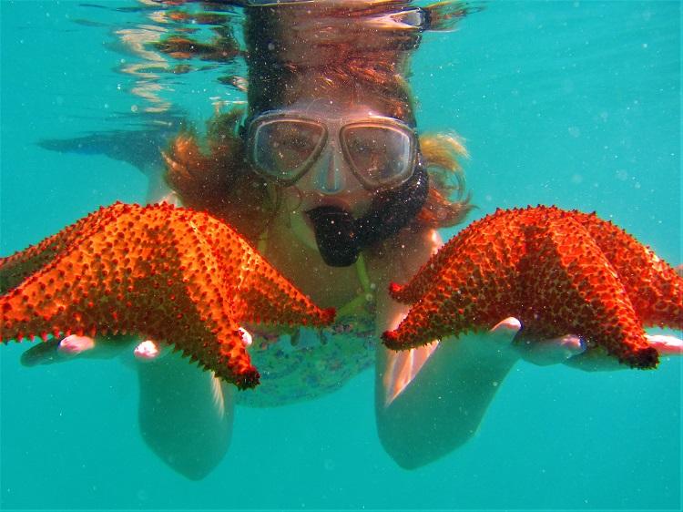 Holding 2 Starfish
