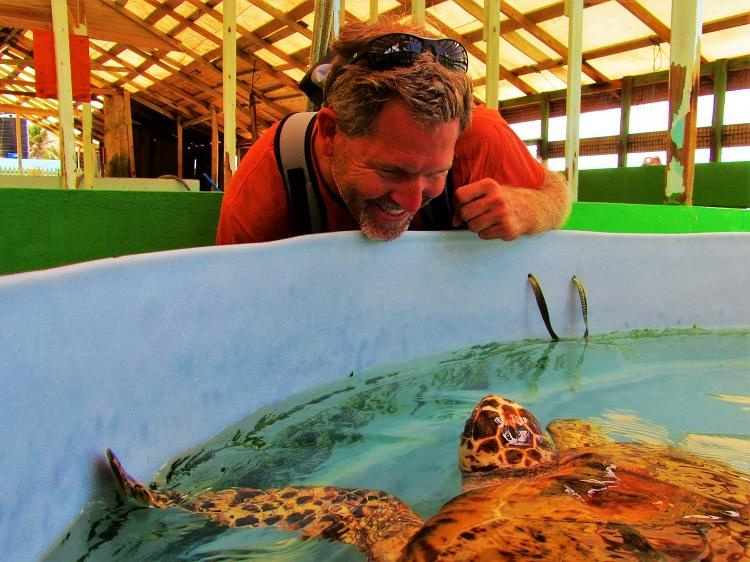 Old Hegg Turtle Sanctuary 1