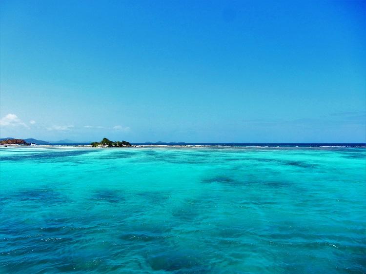Union Island reef