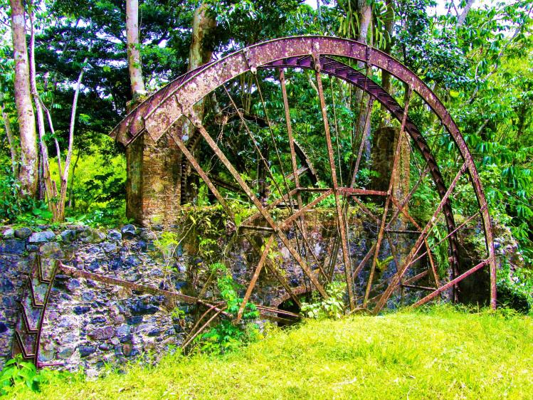 Nutmeg Grove watermill