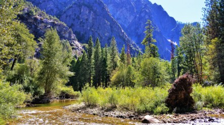 Kings Canyon NP 2