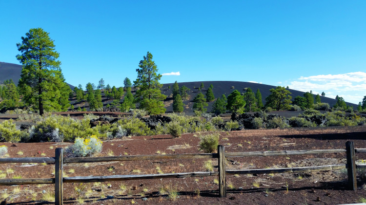 Sunset Crater Volcano National Monument 2