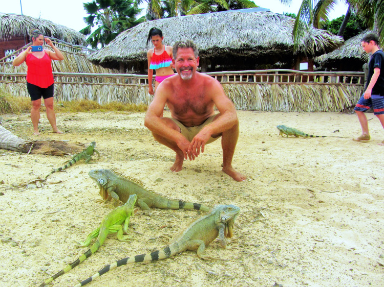 Iguanas POTD