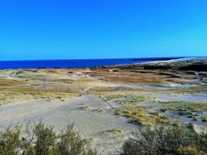 Nida Sand Dune 1