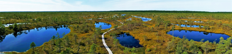 Latvia - Great Ķemeri Moorland POTD
