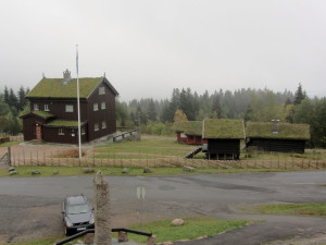 Buildings with grass roofs
