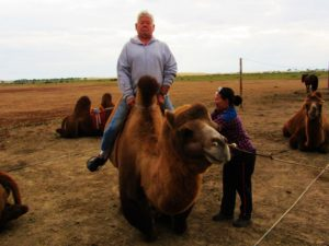 mongolia-5-elsen-tasarkhai-camels-dad-getting-up