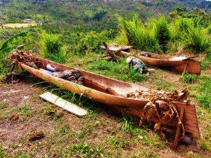 Carib Indian canoes