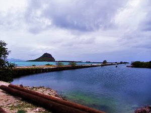Frigate Island causeway