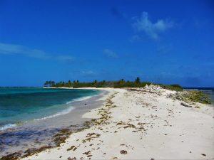 Tobago Cays island
