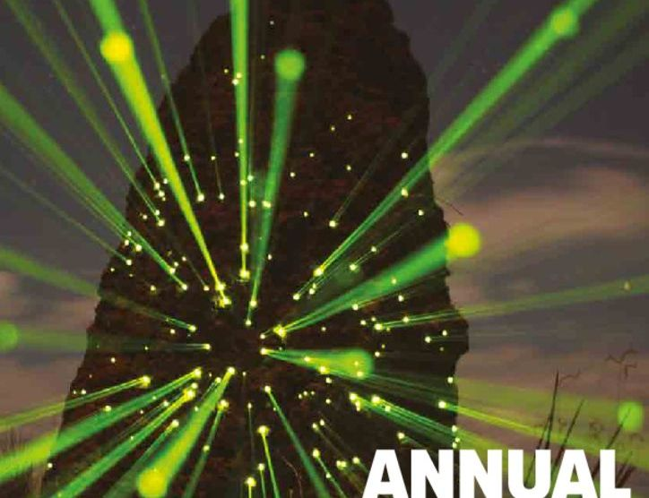 thumbnail of UNEP_2016_Annual_Report_2015