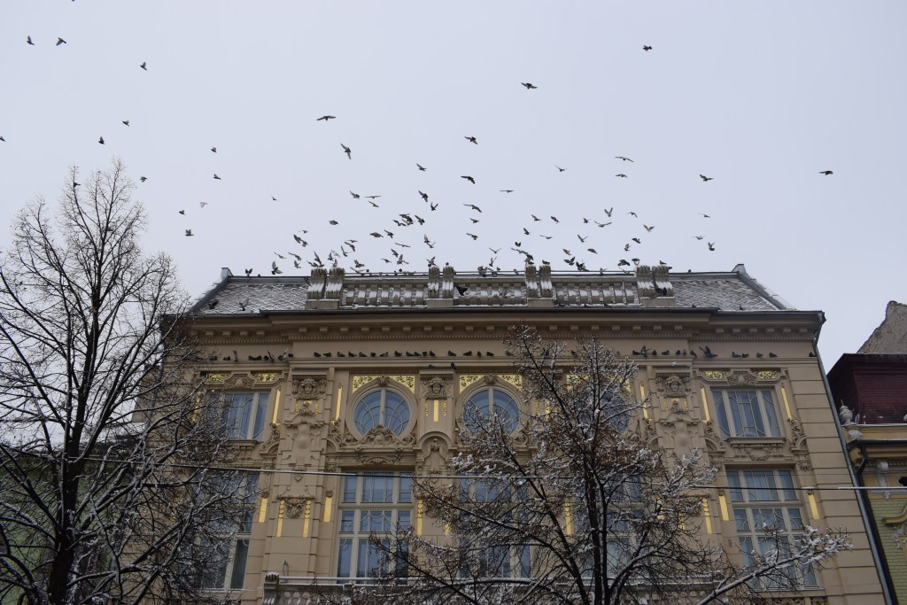 one day in kosice
