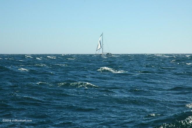 s/v Slainte motor sailing with jib, enroute to Santa Cruz from Half Moon Bay.