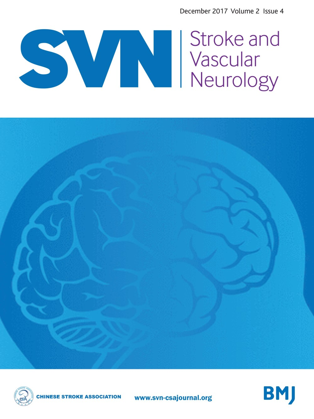 medium resolution of eyes and stroke the visual aspects of cerebrovascular disease stroke and vascular neurology