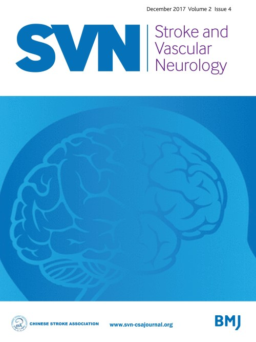 small resolution of eyes and stroke the visual aspects of cerebrovascular disease stroke and vascular neurology