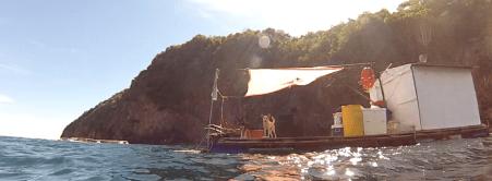 Carrizal floating dock dogs