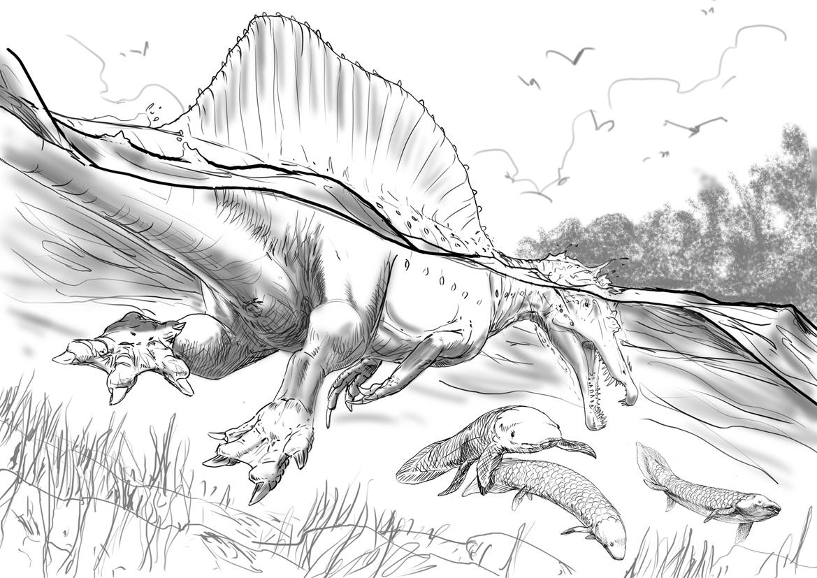 Guest post: the genesis of Davide Bonadonna's Spinosaurus