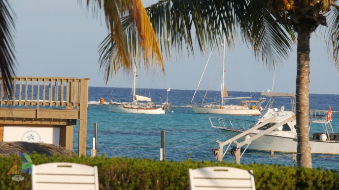 Looking out at the anchorage from Little Cayman Beach Resort