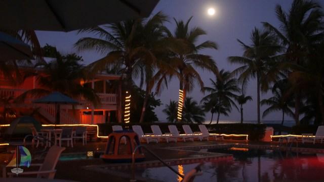 Pool deck at Little Cayman Beach Resort