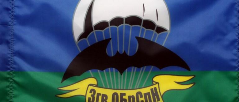3-я отдельная гвардейская бригада специального назначения