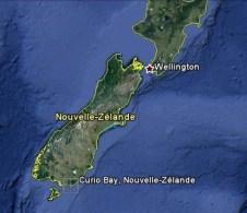 Curio bay est au sud de l'île du Sud