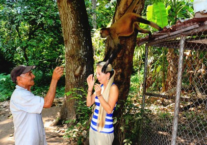 #Barillas_Jessie + monkey2