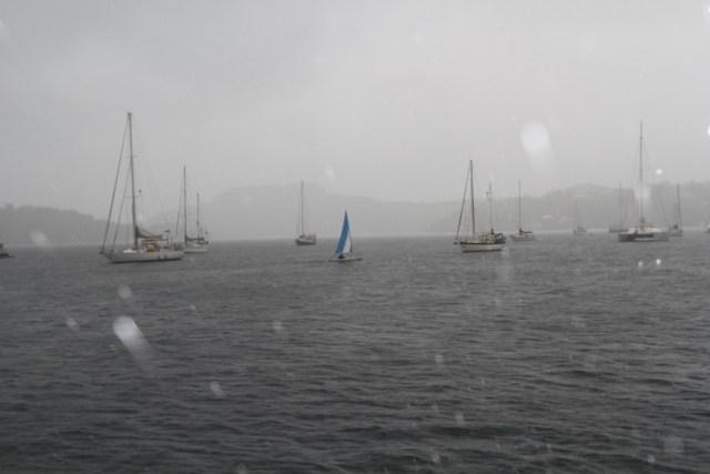 Jolly.....Neiafu harbour in the rain.