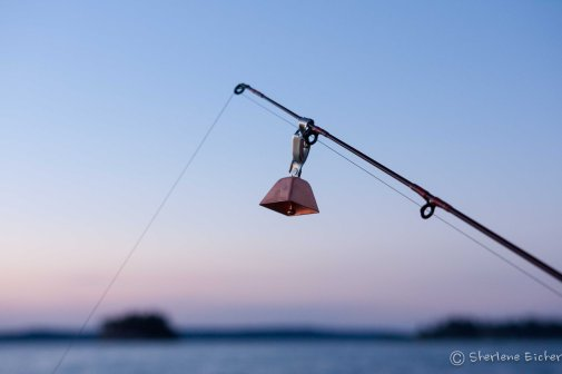 The fishing wasn't so hot