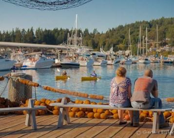 Gig Harbor 2150714-10
