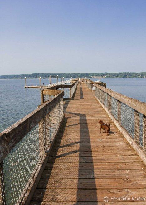 The long dock walk