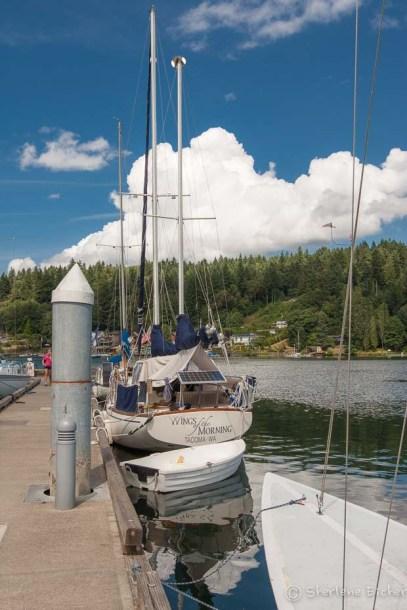 Public dock