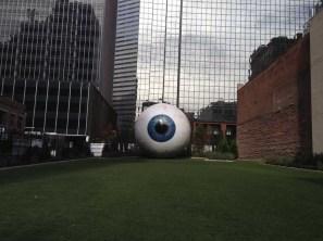 dallas eye 12-3-2013 (4)