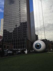 dallas eye 12-3-2013 (7)