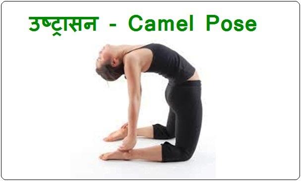 उष्ट्रासन - Camel Pose