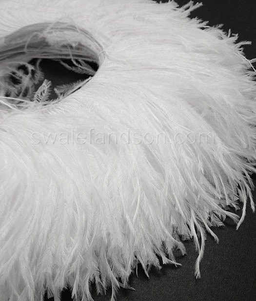 Ostrich Feather Fringe 6 7 Snow White 2 Yards