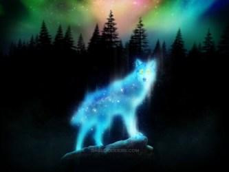Wolf Spirit Animal Art 1600x1200 Wallpaper teahub io