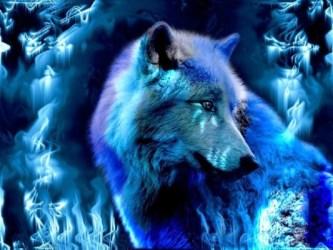 Spirit Of The Wolf Wallpaper Water Verse Spirit Animal Wolf Background 1024x768 Wallpaper teahub io
