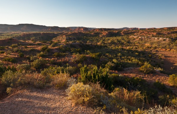 western american landscape